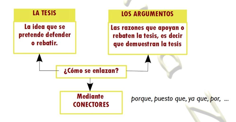 Aula Z Estructura argumentación breve